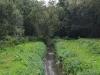 2-maalbeek-nekkerbos